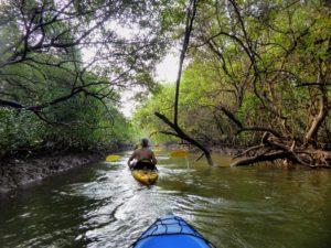 kayaking tour in Goa