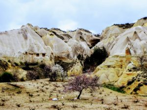 Red and Rose Valley in Cappadocia